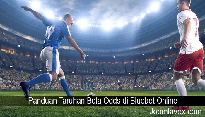 Panduan Taruhan Bola Odds di Bluebet Online